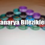 kanarya-bilezik