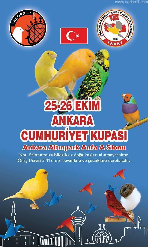 Ankara Cumhuriyet Kupası -2014